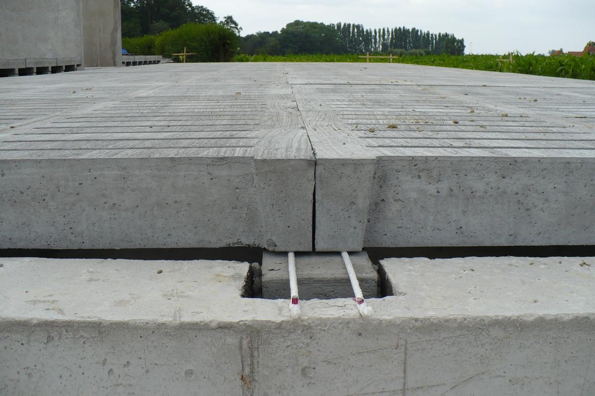 Cattle Slats Cow Barn Concrete Slats Concrete Cattle